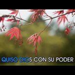 dyango-suspiros-de-espana